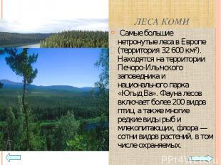 ЛЕСА КОМИ Самые большие нетронутые леса в Европе (территория 32 600 км²). Находя