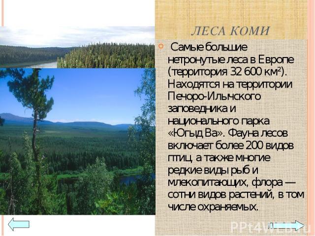 ЛЕСА КОМИ Самые большие нетронутые леса в Европе (территория 32 600 км²). Находятся на территории Печоро-Илычского заповедника и национального парка «Югыд Ва». Фауна лесов включает более 200 видов птиц, а также многие редкие виды рыб и млекопитающих…