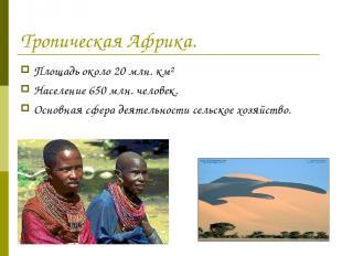 Тропическая Африка. Площадь около 20 млн. км² Население 650 млн. человек. Основн