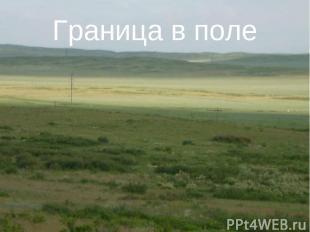 Граница в поле