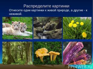 Распределите картинки Отнесите одни картинки к живой природе, а другие - к нежив