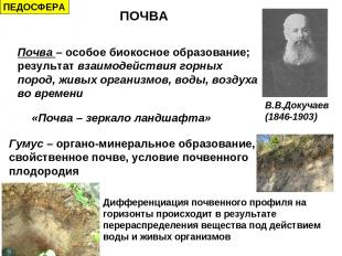 ПОЧВА Почва – особое биокосное образование; результат взаимодействия горных поро