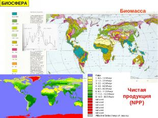 Чистая продукция (NPP) Биомасса БИОСФЕРА