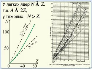 20 У легких ядер N ≈ Z, т.е. А ≈ 2Z, у тяжелых – N > Z.