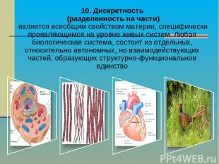 10. Дискретность (разделенность на части) является всеобщим свойством материи, с