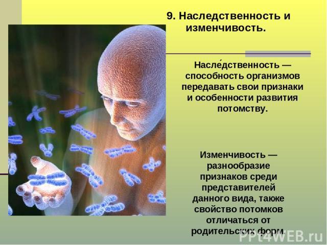 9. Наследственность и изменчивость. Насле дственность — способность организмов передавать свои признаки и особенности развития потомству. Изменчивость — разнообразие признаков среди представителей данного вида, также свойство потомков отличаться от …