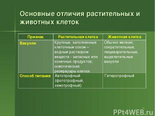 Основные отличия растительных и животных клеток * Признак Растительная клетка Жи