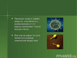 Признаки живого (обмен веществ, способность к размножению и т.п.) вирусы проявля