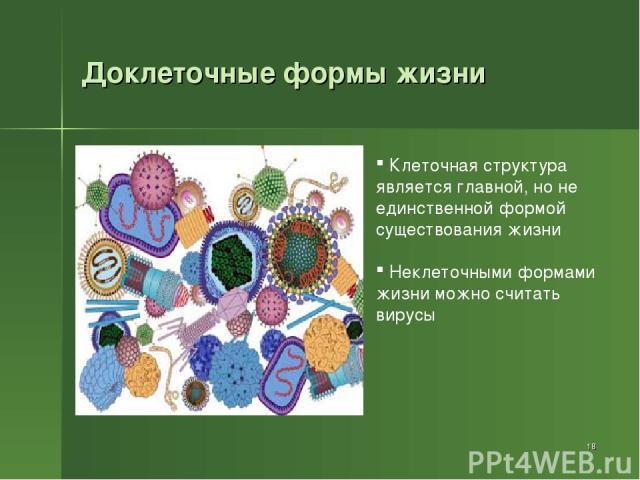 Доклеточные формы жизни * Клеточная структура является главной, но не единственной формой существования жизни Неклеточными формами жизни можно считать вирусы