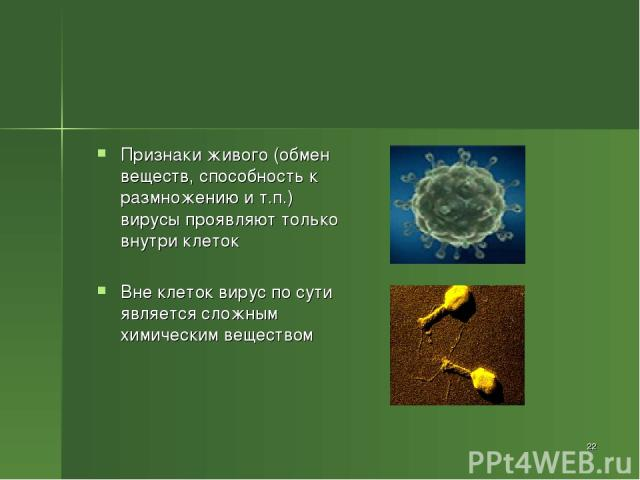 Признаки живого (обмен веществ, способность к размножению и т.п.) вирусы проявляют только внутри клеток Вне клеток вирус по сути является сложным химическим веществом *