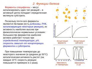 Ферменты специфичны – могут катализировать один тип реакций – в активный центр п