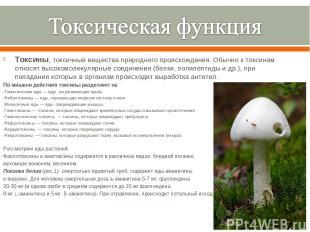 Токсины, токсичные вещества природного происхождения. Обычно к токсинам относят