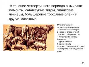 * В течение четвертичного периода вымирают мамонты, саблезубые тигры, гигант