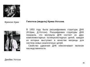 * Френсис Крик Джеймс Уотсон Гипотеза (модель) Крика-Уотсона В 1953 году была ра