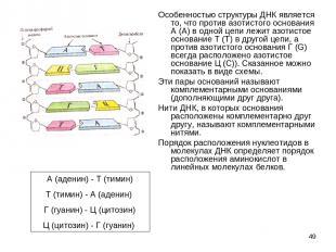 * Особенностью структуры ДНК является то, что против азотистого основания А (А)