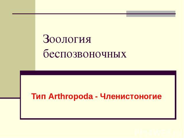 Зоология беспозвоночных Тип Arthropoda - Членистоногие
