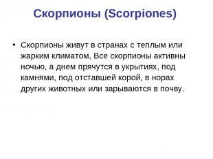 Скорпионы (Scorpiones) Скорпионы живут в странах с теплым или жарким климатом, В