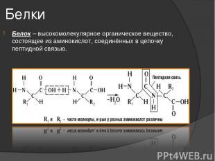 Белки Белок – высокомолекулярное органическое вещество, состоящее из аминокислот