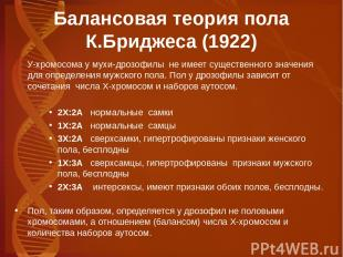 Балансовая теория пола К.Бриджеса (1922) У-хромосома у мухи-дрозофилы не имеет