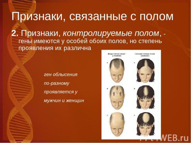 Признаки, связанные с полом 2. Признаки, контролируемые полом, - гены имеются у особей обоих полов, но степень проявления их различна ген облысения по-разному проявляется у мужчин и женщин
