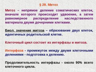§ 29. Митоз Митоз – непрямое деление соматических клеток, вначале которого проис