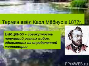 Термин ввёл Карл Мёбиус в 1877г. Биоценоз – совокупность популяций разных видов,