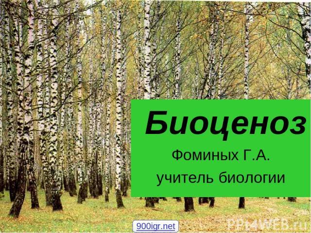 Биоценоз Фоминых Г.А. учитель биологии 900igr.net