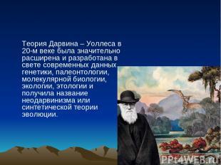 Теория Дарвина – Уоллеса в 20-м веке была значительно расширена и разработана в