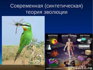 Современная (синтетическая) теория эволюции