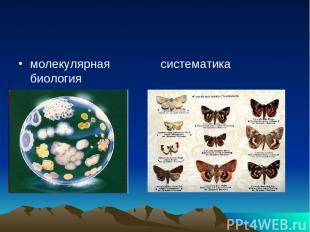 молекулярная биология систематика