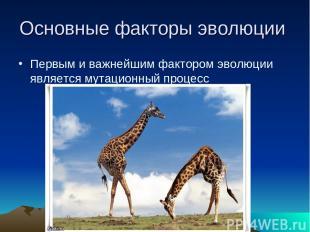 Основные факторы эволюции Первым и важнейшим фактором эволюции является мутацион