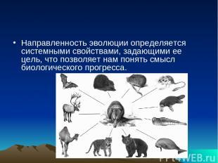 Направленность эволюции определяется системными свойствами, задающими ее цель, ч