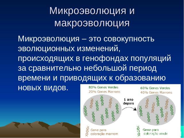 Микроэволюция и макроэволюция Микроэволюция – это совокупность эволюционных изменений, происходящих в генофондах популяций за сравнительно небольшой период времени и приводящих к образованию новых видов.