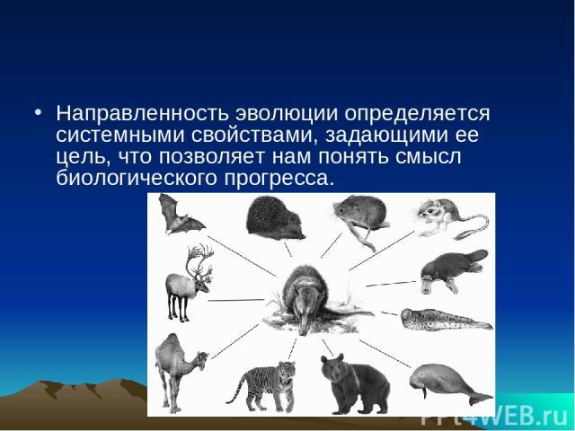 Направленность эволюции определяется системными свойствами, задающими ее цель, что позволяет нам понять смысл биологического прогресса.