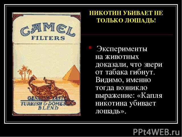 Эксперименты наживотных доказали, что звери оттабака гибнут. Видимо, именно тогда возникло выражение: «Капля никотина убивает лошадь». НИКОТИН УБИВАЕТ НЕ ТОЛЬКО ЛОШАДЬ!