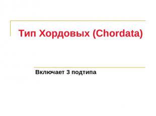 Тип Хордовых (Chordata) Включает 3 подтипа