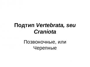 Подтип Vertebrata, seu Craniota Позвоночные, или Черепные