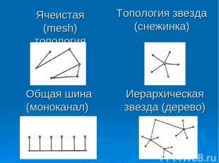 Ячеистая (mesh) топология Общая шина (моноканал) Топология звезда (снежинка) Иер