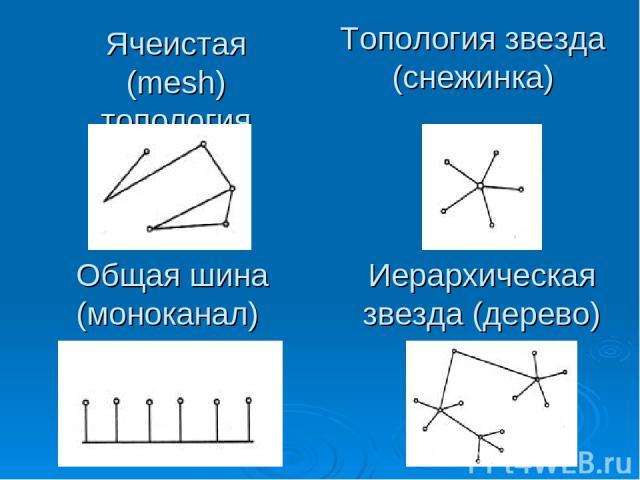 Ячеистая (mesh) топология Общая шина (моноканал) Топология звезда (снежинка) Иерархическая звезда (дерево)