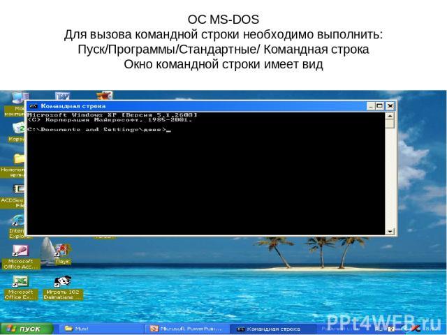 ОС MS-DOS Для вызова командной строки необходимо выполнить: Пуск/Программы/Стандартные/ Командная строка Окно командной строки имеет вид