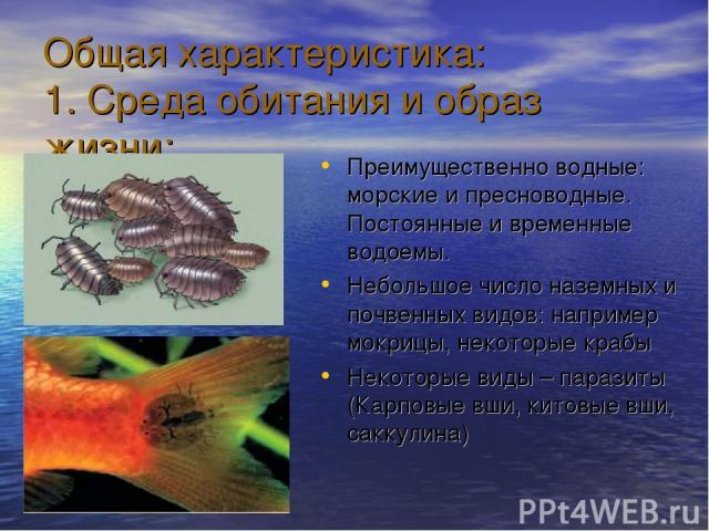 Общая характеристика: 1. Среда обитания и образ жизни: Преимущественно водные: морские и пресноводные. Постоянные и временные водоемы. Небольшое число наземных и почвенных видов: например мокрицы, некоторые крабы Некоторые виды – паразиты (Карповые …