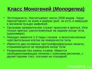 Класс Моногеней (Monogenea) Эктопаразиты. Насчитывают около 2500 видов. Чаще пар