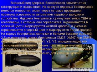 Внешний вид ядерных боеприпасов зависит от их конструкции и назначения. На корпу