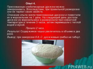 Опыт 4. Прессованные хлебопекарные дрожжи можно замораживать. Впоследствии, при