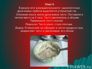 Опыт 5. В результате жизнедеятельности одноклеточных дрожжевых грибков выделяетс