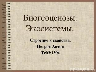 Биогеоценозы. Экосистемы. Строение и свойства. Петров Антон Тс03/1306