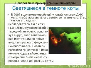 Невероятные примеры генной инженерии Светящиеся в темноте коты В 2007 году южнок