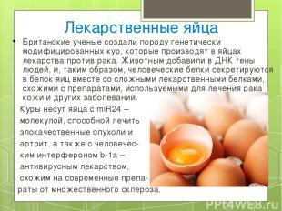Лекарственные яйца Британские ученые создали породу генетически модифицированных