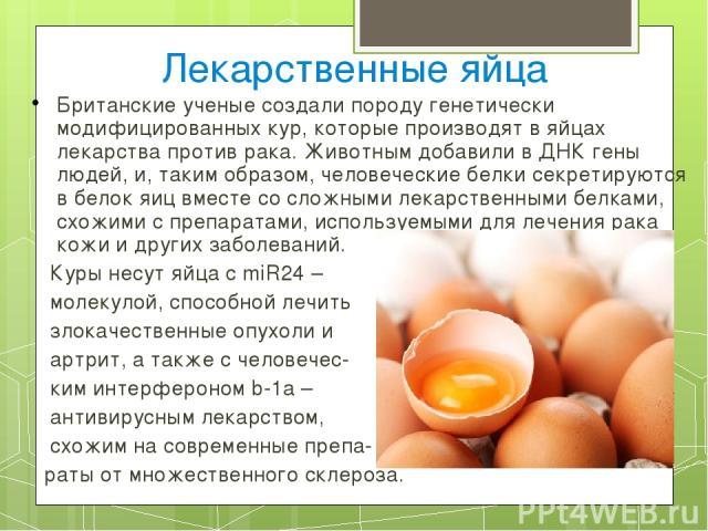 Лекарственные яйца Британские ученые создали породу генетически модифицированных кур, которые производят в яйцах лекарства против рака. Животным добавили в ДНК гены людей, и, таким образом, человеческие белки секретируются в белок яиц вместе со слож…