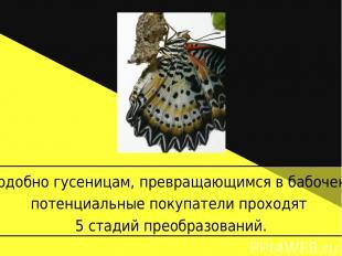 Подобно гусеницам, превращающимся в бабочек, потенциальные покупатели проходят 5
